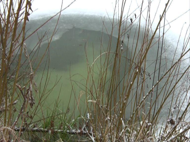 Жители Семибратово опасаются за свои жизни из-за непонятных стоков в реку Устье