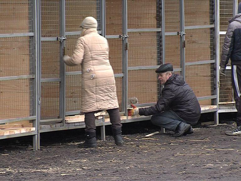 12 вольеров для бездомных собак установили на территории САХа