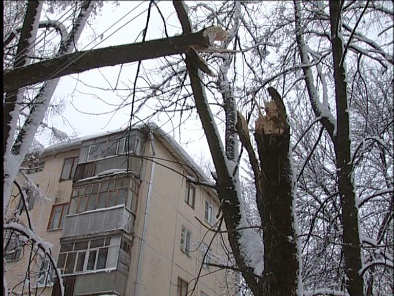 Без электричества ночью остались жители пяти районов области