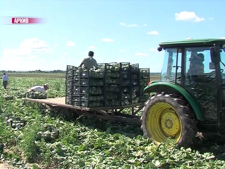 Ярославская область получит более 25 млн. на поддержку АПК