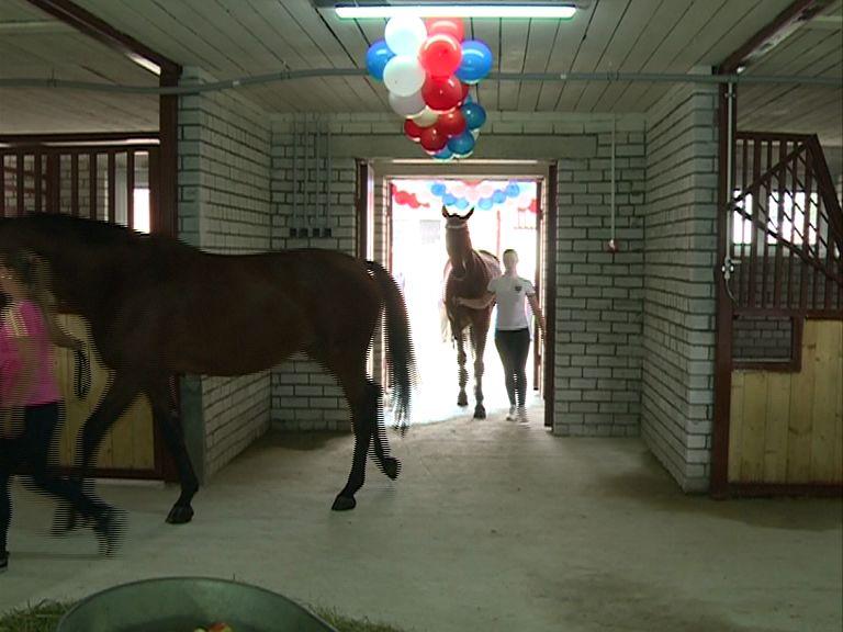 В конноспортивной школе появилась конюшня за 10,5 млн.