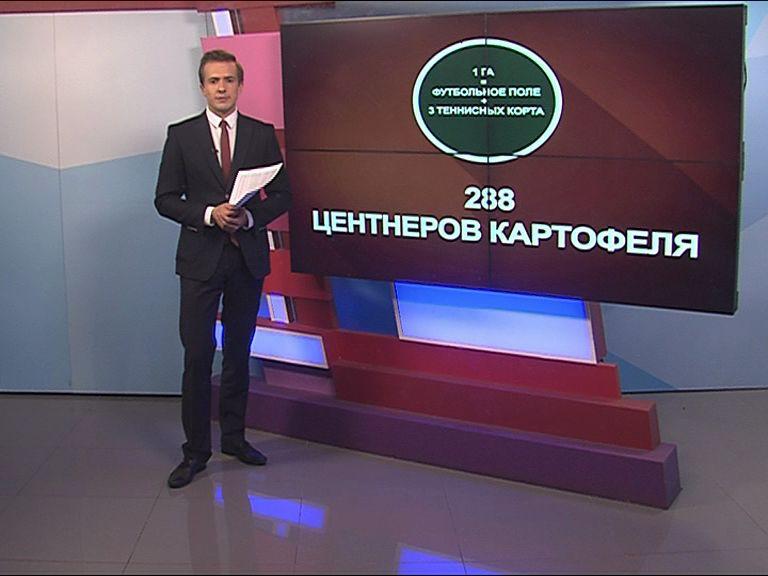 Урожай-2016: Чем похвастается Ярославская область