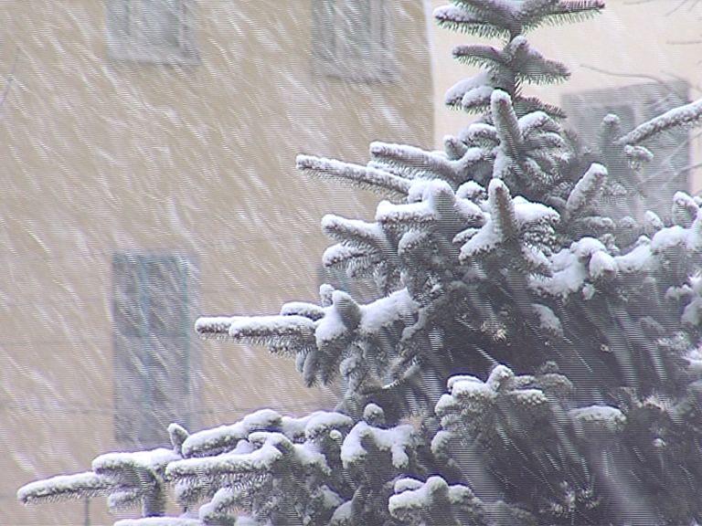 Рождественские морозы: температура в Ярославской области опустится до -30