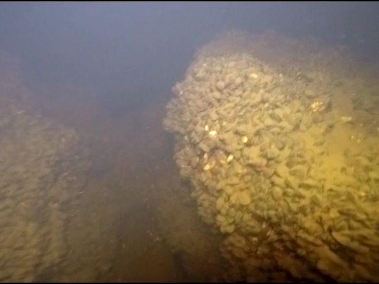 ВИДЕО: Уникальные подводные съемки затопленной Мологи