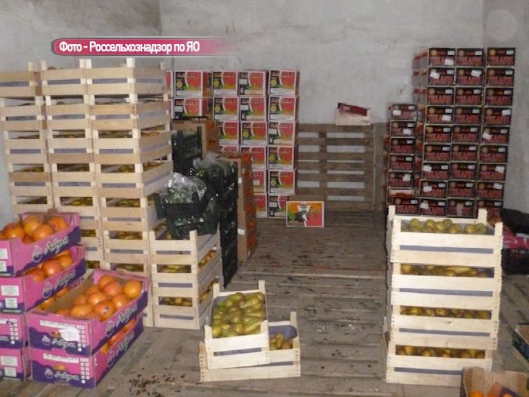 2,5 тонны «санкционки» уничтожили на полигоне в Скоково