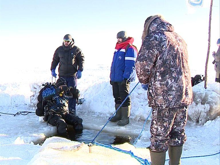 В Ярославской области началась масштабная экспедиция на месте затонувшей Мологи