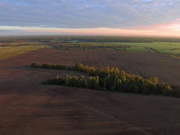 Инвесторы смогут получить земельные участки без торгов
