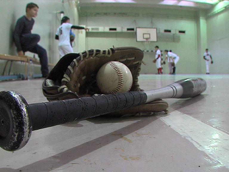 В Ярославле все большую популярность набирает бейсбол