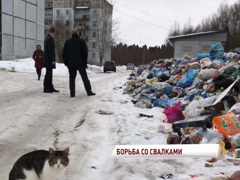 В Ярославской области более трех сотен несанкционированных свалок