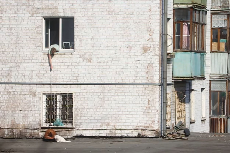 ВИДЕО: Ярославец провел спецоперацию по спасению кота