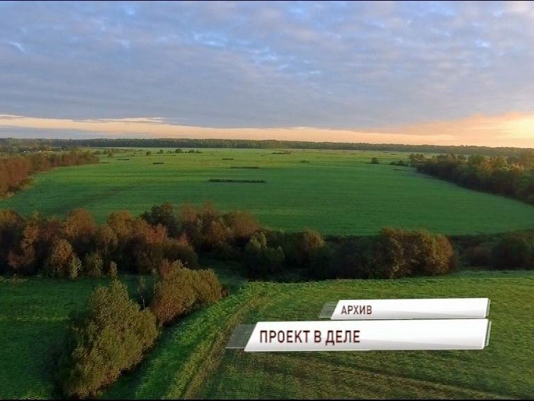 40 тысяч гектаров заброшенных сельхозугодий должны ввести в оборот уже в этом году