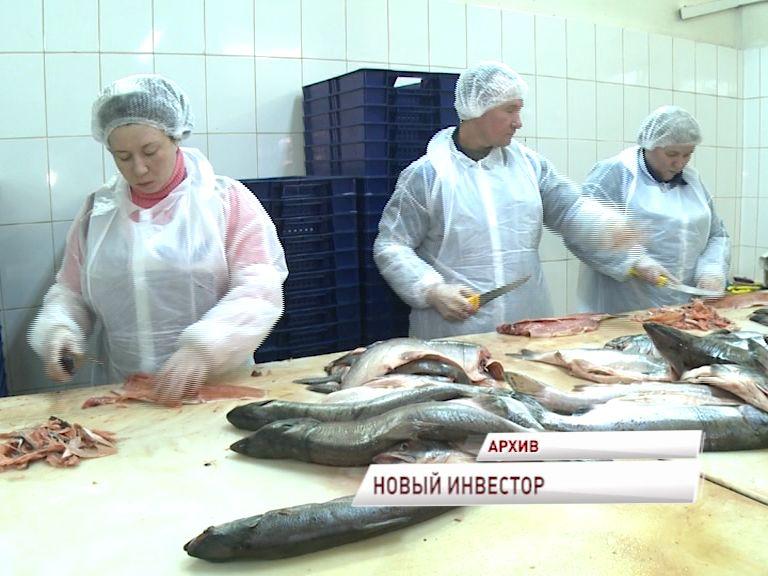 Инвестор готов вложить 18 млн. на строительство индустриального рыбного комплекса пошехонского рыбзавода