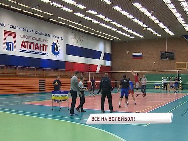 «Ярославич» проведет заключительный домашний тур в чемпионате