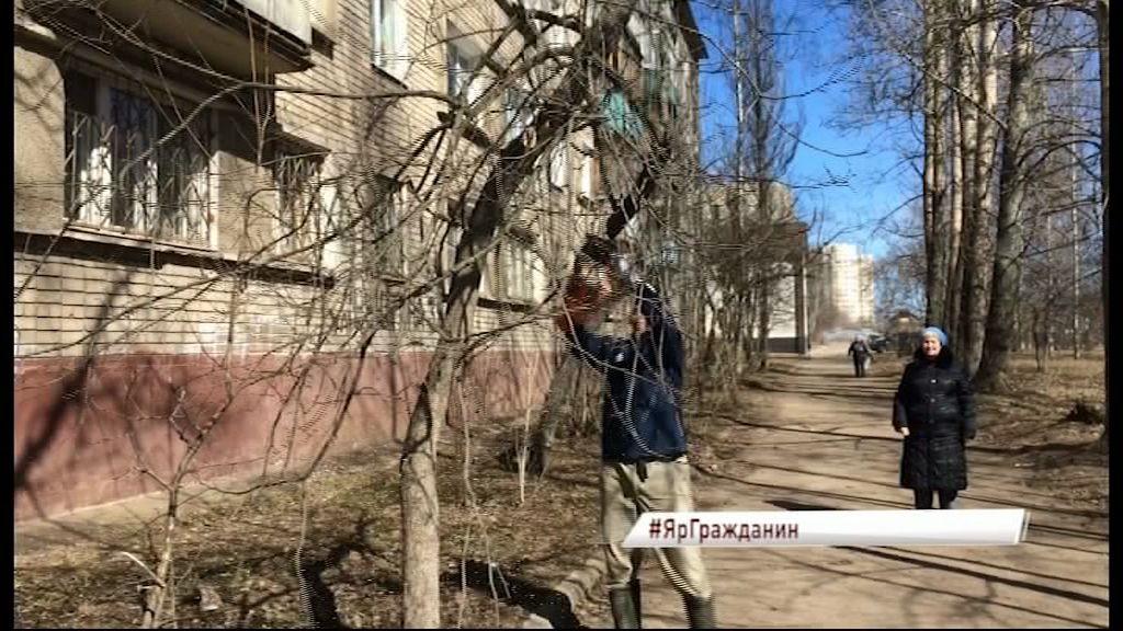 В Ярославле в соцсетях набирает популярность флешмоб #ЯрГражданин