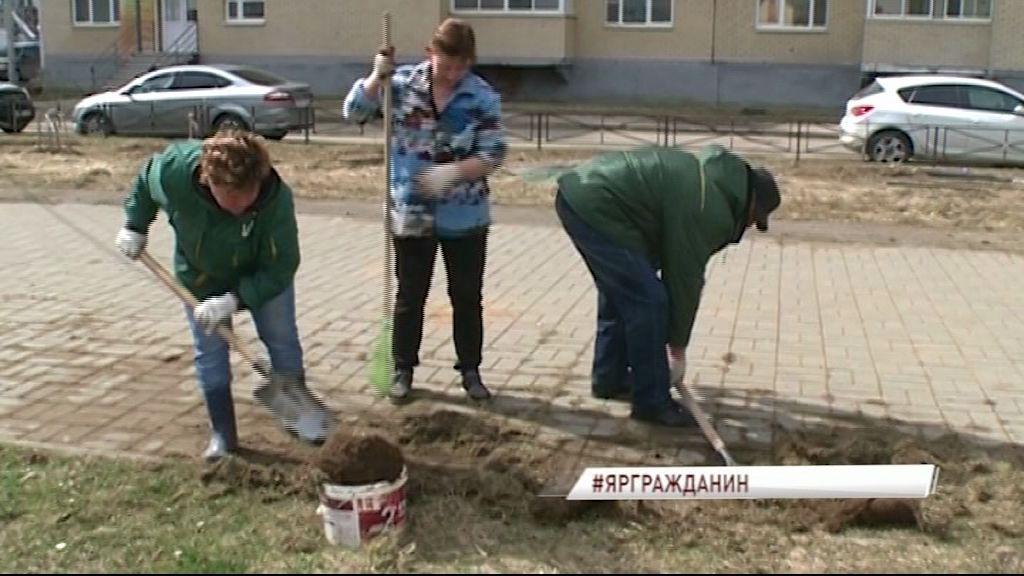 В Чистый четверг в Ярославле проходит общегородской субботник