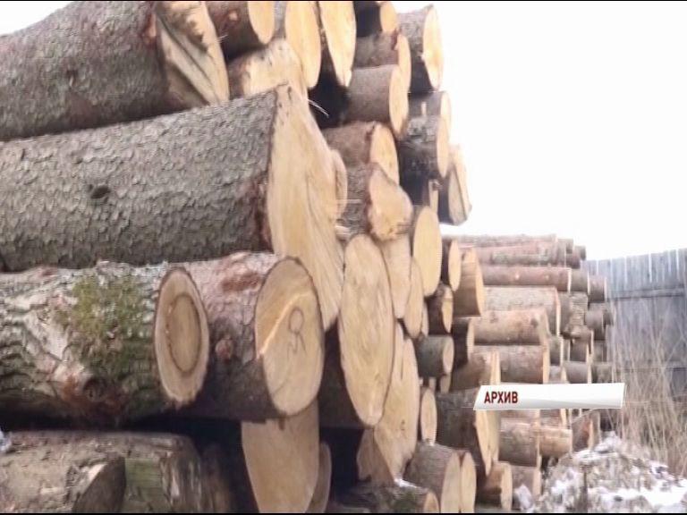 Рейд по предотвращению провоза нелегальной древесины на ж/д транспорте проходит в Первомайском районе