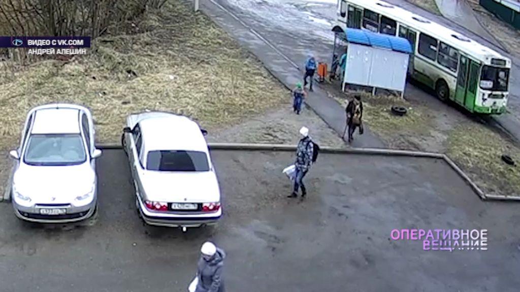 ВИДЕО: Ярославские ямы вынуждают общественный транспорт ездить по тротуарам