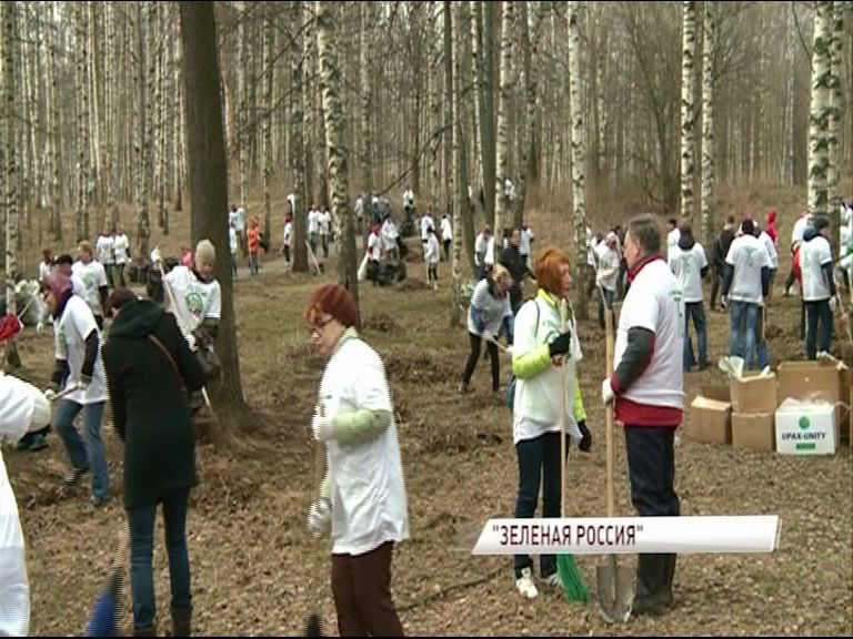 40 тысяч ярославцев вышли на субботник