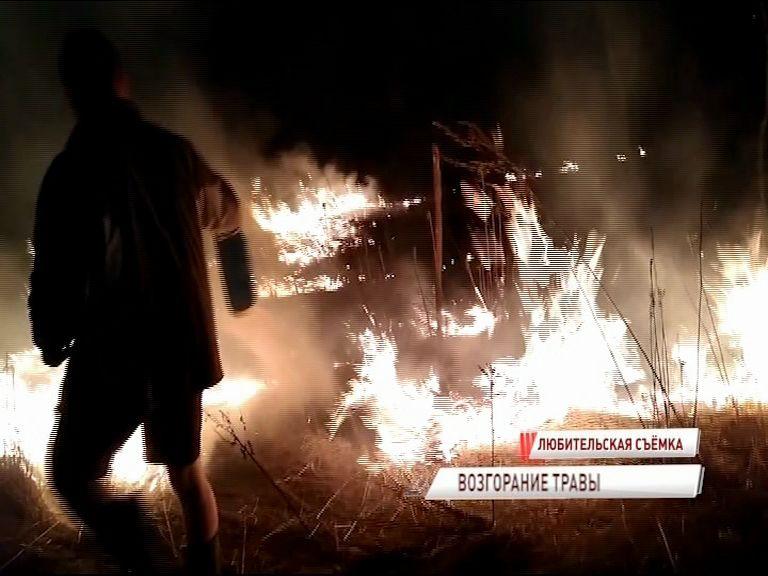 ВИДЕО: непотушенный костер привел к крупному возгоранию сухой травы