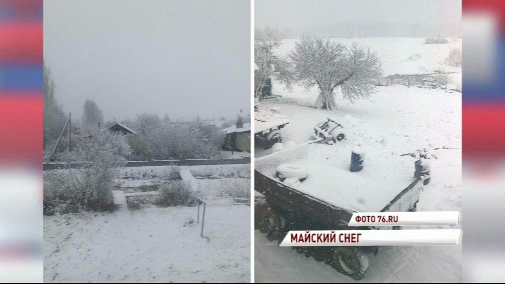 В Ярославской области выпал снег, местами до 30 сантиметров