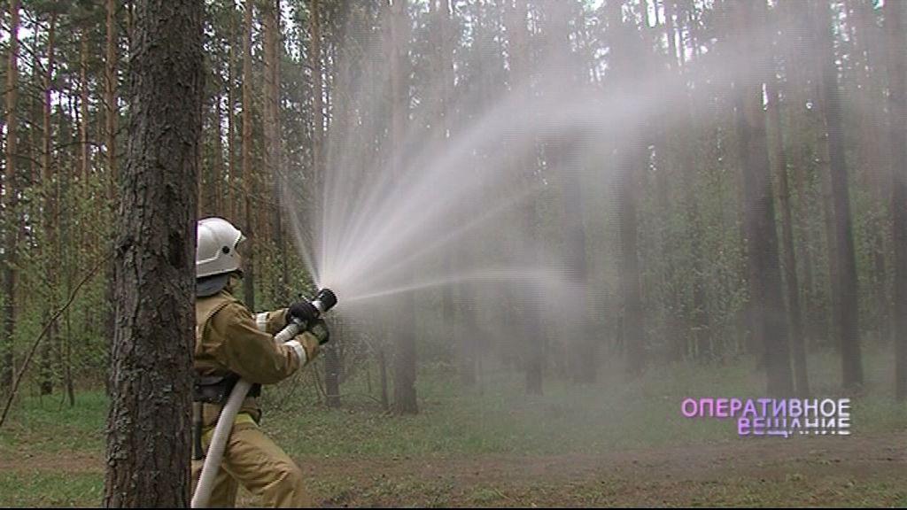 Спасатели показали, как борются с лесными пожарами