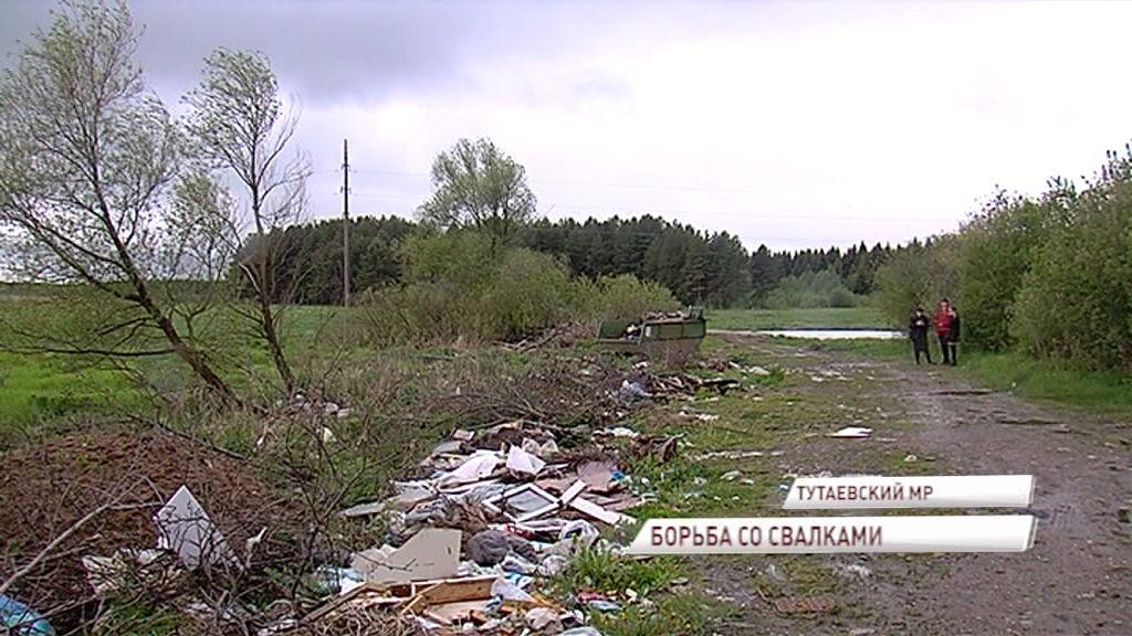 На территории Ярославской области выявлено уже боле 150 несанкционированных мусорных свалок