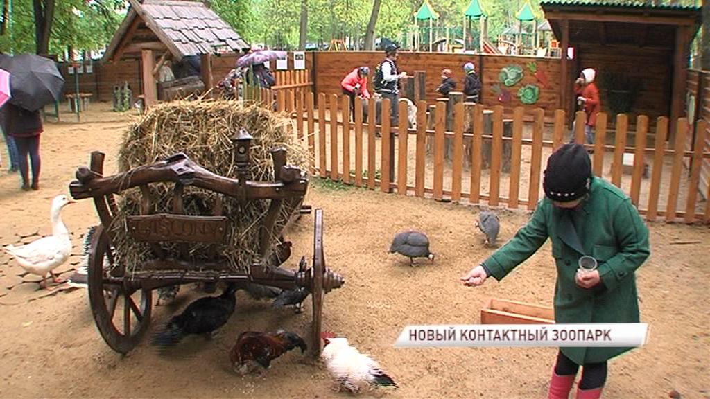 В Ярославле открылся новый контактный зоопарк