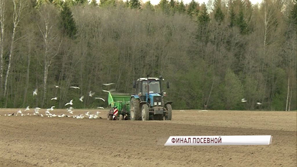 Из-за затяжной весны сельхозпредприятия могут потерять часть урожая