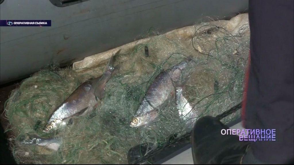 Операция «Нерест»: поймано более 20 браконьеров