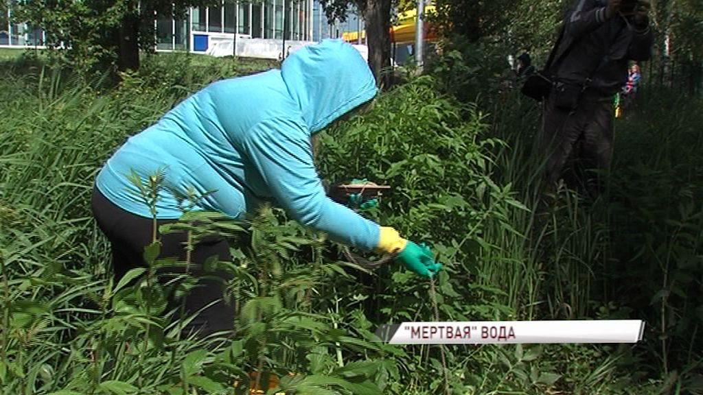 Специалисты проверяют «мертвую воду» в пруду парка Судостроителей