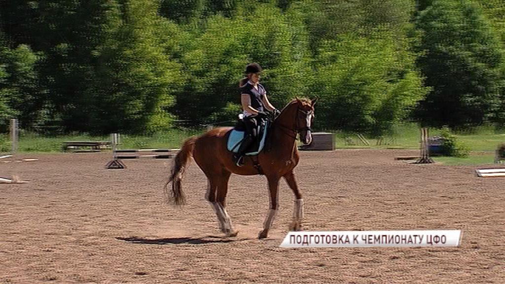 Ярославские конники готовятся к чемпионату ЦФО
