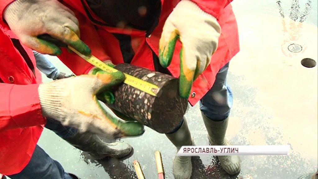 Инспекторы оценили качество ремонта дорог в районе поселка Карачиха