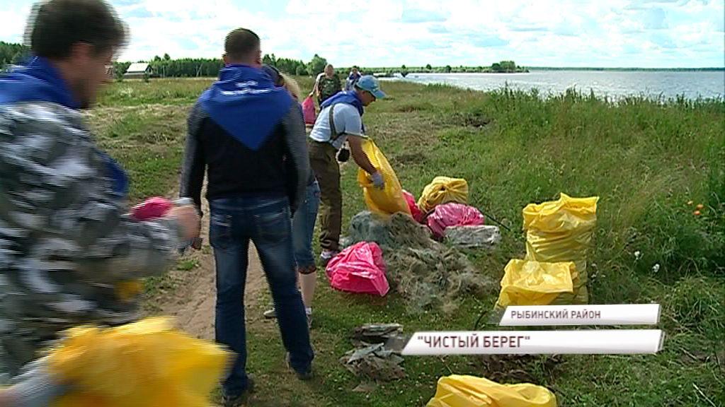 Берега Рыбинского моря основательно почистят