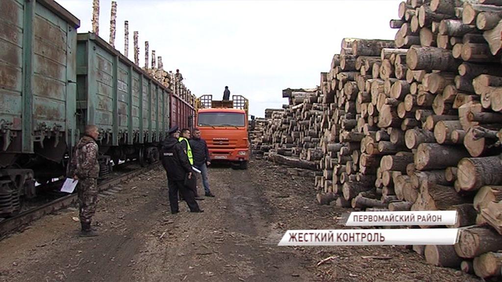 Ярославская область - лидер ЦФО по легализации оборота древесины и объемам лесовосстановления