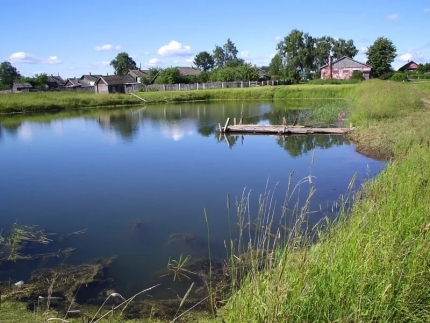 В пруду утонул 12 мальчик, спасая свою подругу