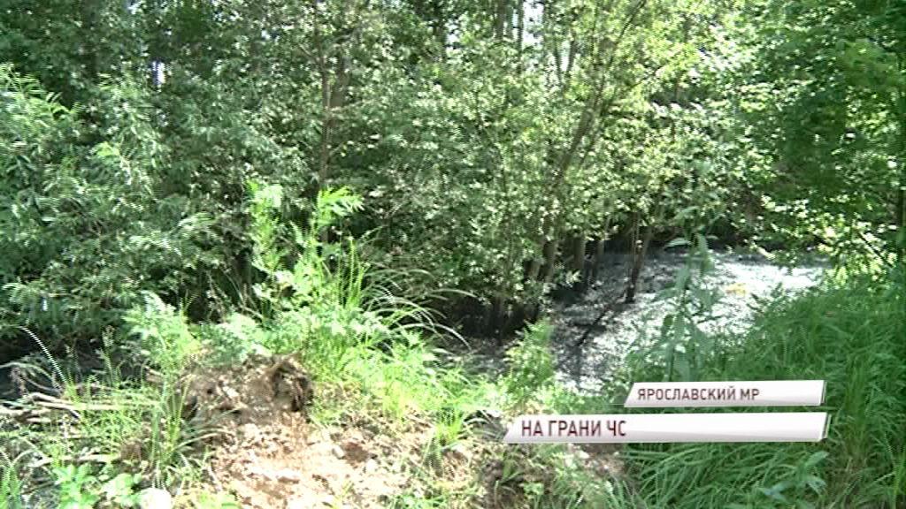 У станции Тенино обнаружены разливы нефтеотходов