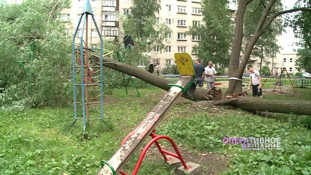 Ива разломилась натрое и упала на детскую площадку