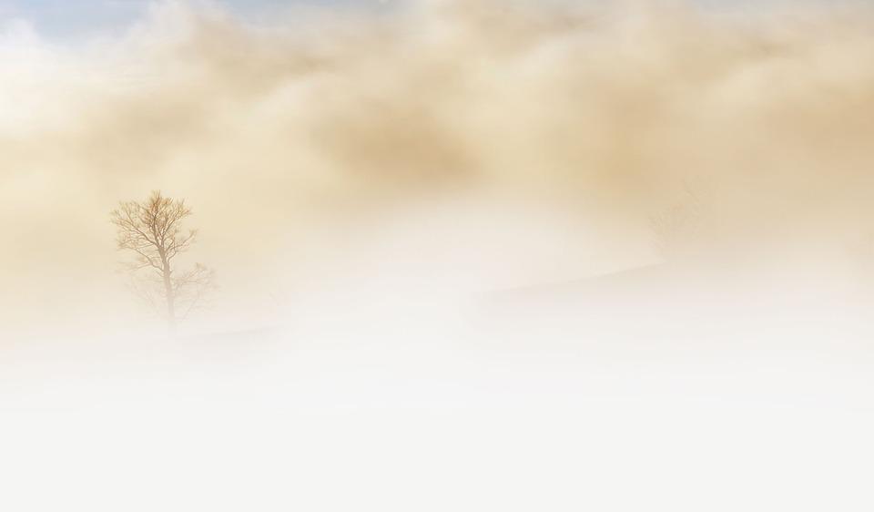 В Ярославской области из-за туманов объявлен желтый уровень опасности