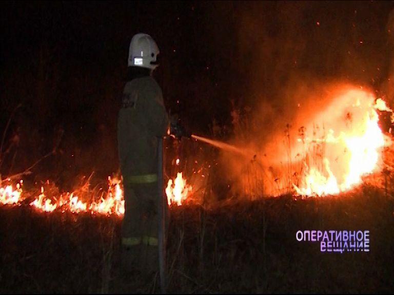 В десяти районах области ввели особый противопожарный режим