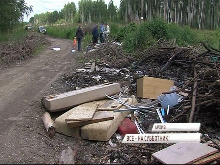 Жители Ярославской области примут участие во Всероссийском экологическом субботнике «Зеленая Россия»