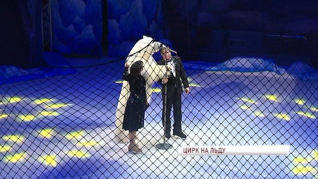 Цирковой манеж на время превращен в ледовый каток: снеговики на коньках, аттракцион белых медведей и настоящий северный морской лев