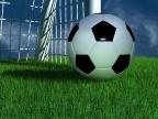 Жители Ярославля смогут увидеть Кубок мира ФИФА