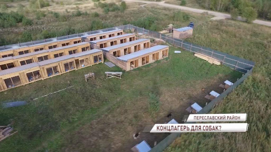 В Ярославской области ищут концлагерь для собак