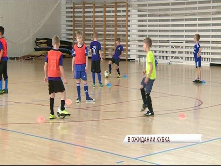 В Ярославле продолжается подготовка к чемпионату мира по футболу