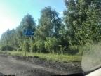 В лесу под Переславлем вторые сутки ищут потерявшихся пенсионеров