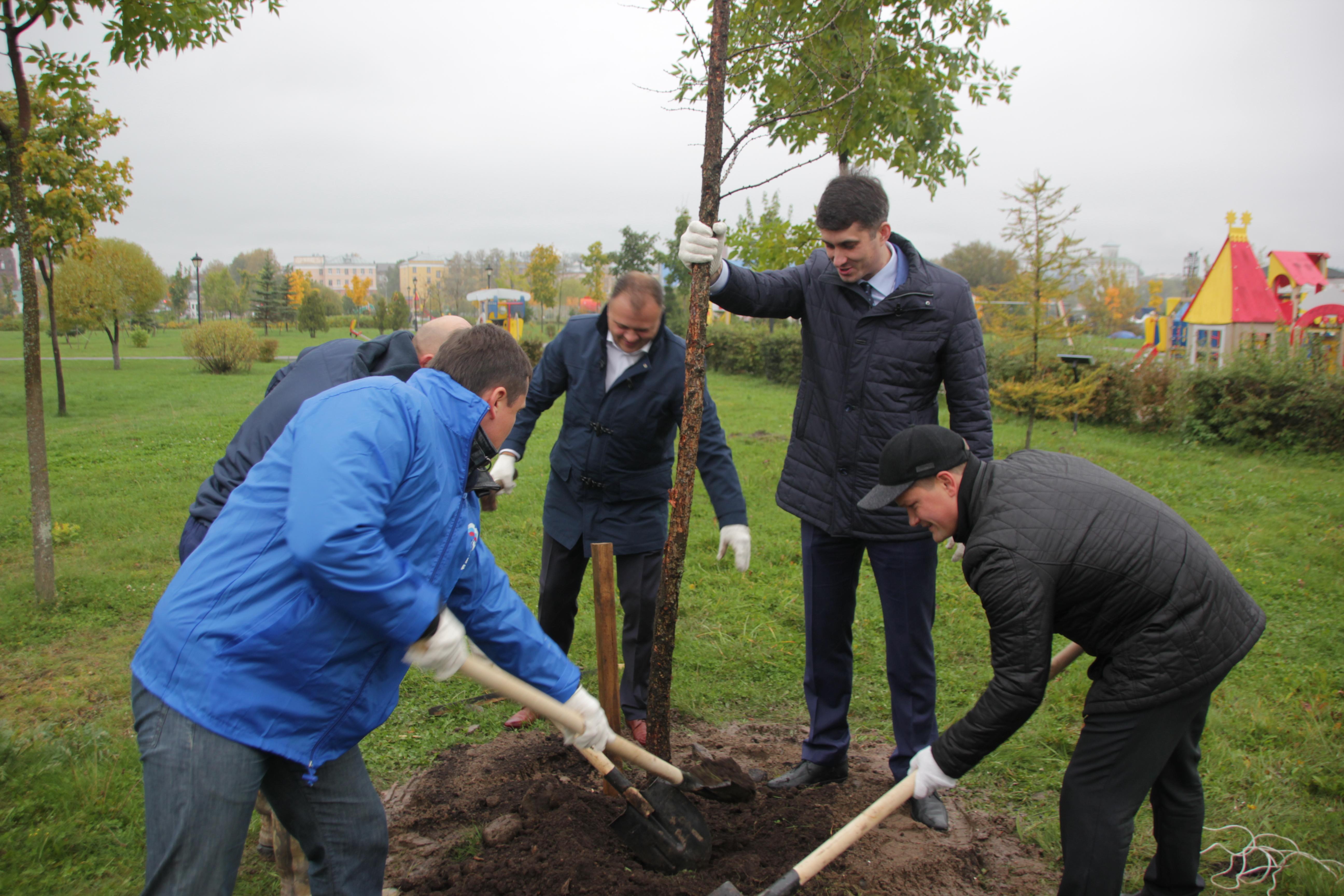 В парке 1000-летия посадили новые деревья