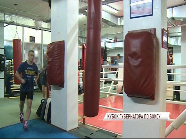 В Ярославль приедут более сотни боксеров со всей страны