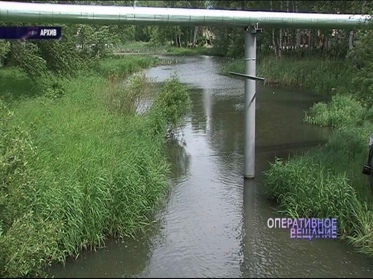 Страшная находка в пруду во Фрунзенском районе: в водоеме нашли тело 32-летнего мужчины