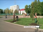 В Ярославле пройдет общегородской субботник