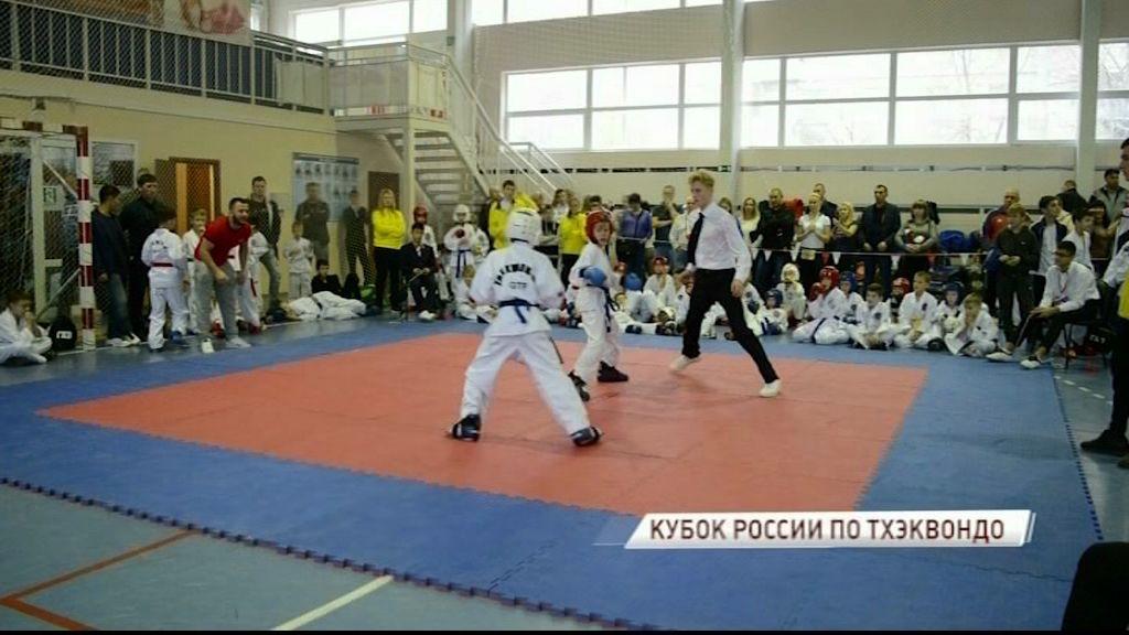 Ярославские спортсмены завоевали 42 медали на Кубке России по тхэквондо